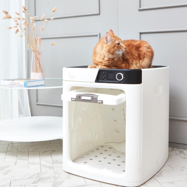 목욕 후 젖은 반려동물을 안전하고 편안하게 자동 건조시켜주는 펫드라이룸(사진=페페)